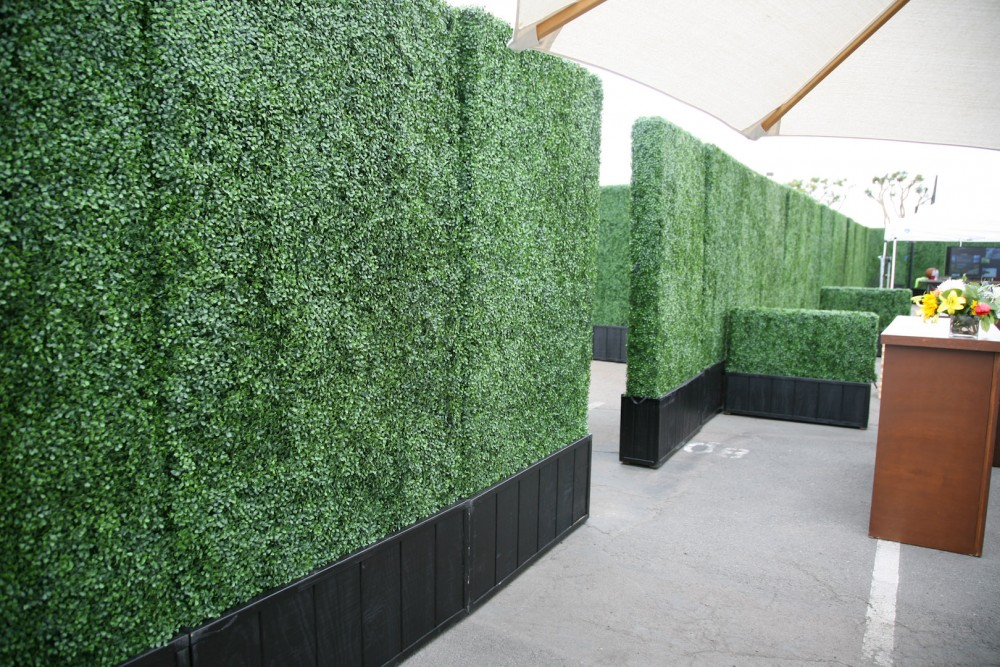 Boxwood Hedge Panels 4 X 8 A1 Party Rental